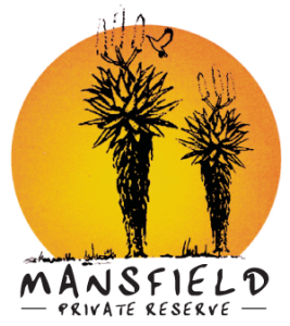 Mansfield South Africa