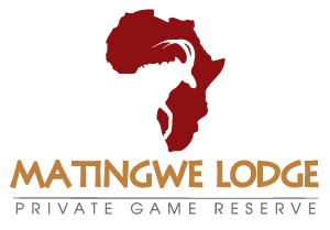 Matingwe Lodge
